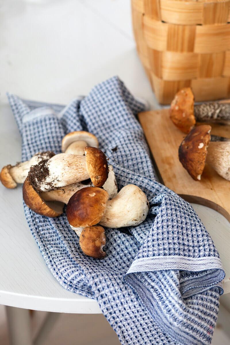 Lapuan Kankurit Maija käsipyyhe 48x70 cm valko-mustikka sienet
